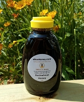 1 lb. Buckwheat Honey