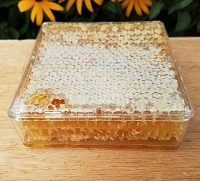 Comb Honey - Wildflower