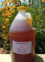 1 Gallon Goldenrod Honey - 12 pounds