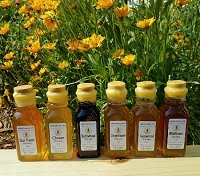 4 oz. Muth Jar Variety Pack - Get 6 Honey Varieties