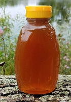 1 Pound Orange Blossom Honey Favor