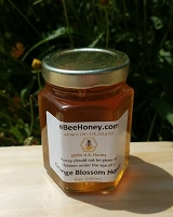 6 oz. Jar Orange Blossom Honey