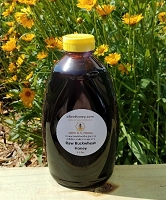 2.5 lbs. Raw Buckwheat Honey