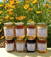 6 oz. Variety Pack - 8 Raw Honey Varieties