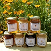 6 oz. Variety Pack - 7 Raw Honey Varieties