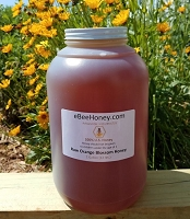 1 Gallon Raw Orange Blossom Honey