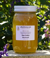 1 Pint Raw Linden / Basswood Honey