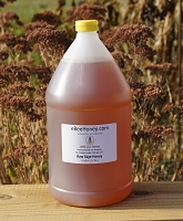 1 Gallon Raw Sage Honey 12 lbs