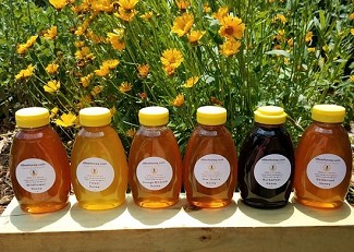 1 lb. Variety Pack:  6 Honey Varieties in this pack:  C, W, G, S, B, O