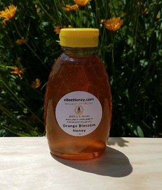 12 - 1 lb. Orange Blossom Honey